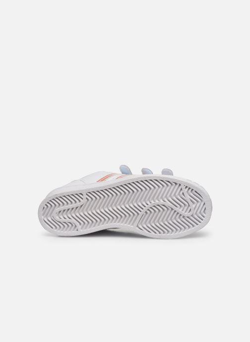 Sneaker adidas originals superstar CF C weiß ansicht von oben