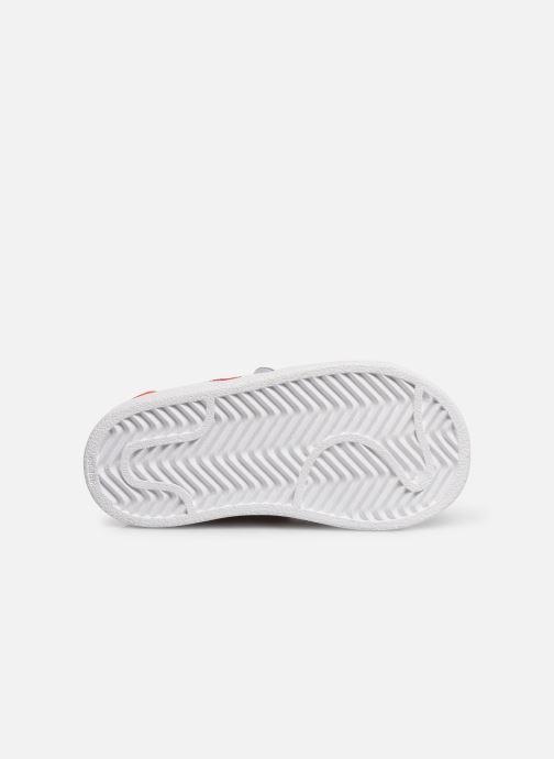 Baskets adidas originals Superstar CF I Blanc vue haut