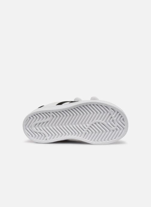 Sneaker adidas originals Superstar CF I weiß ansicht von oben
