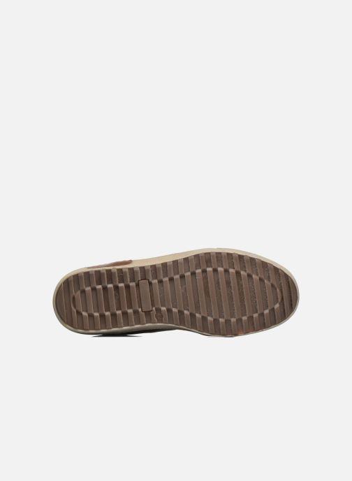 Sneakers Mr SARENZA Walmoute Marrone immagine dall'alto