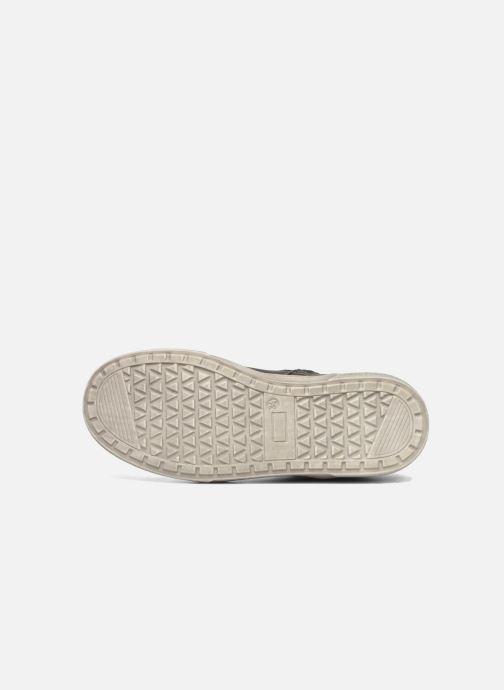 Sneakers Bopy Tabaca Grigio immagine dall'alto