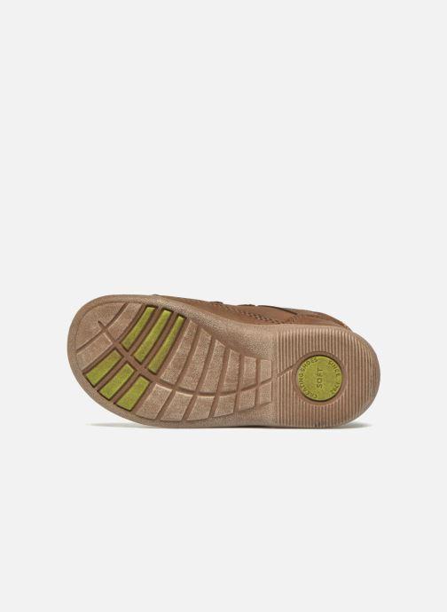 Schoenen met klitteband Start Rite Leo Bruin boven