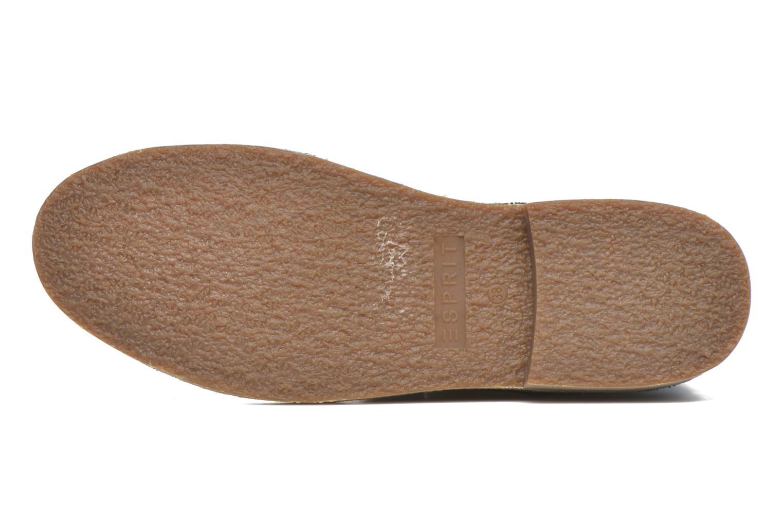 Bottines et boots Esprit Koa Buckle Noir vue haut
