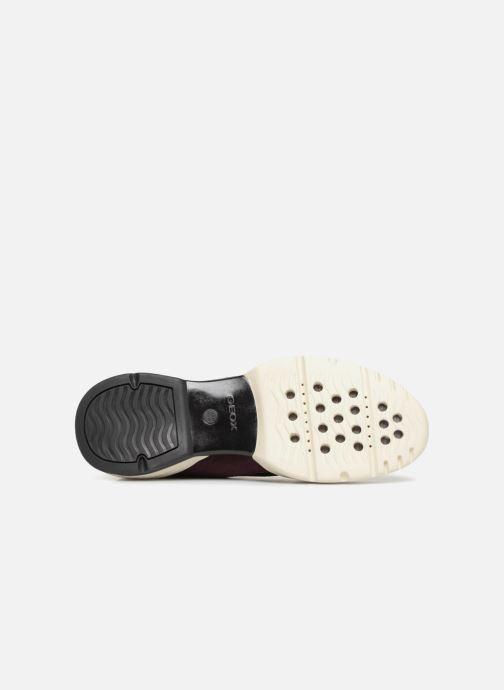 Sneakers Geox D SFINGE A D642NA Bordeaux boven