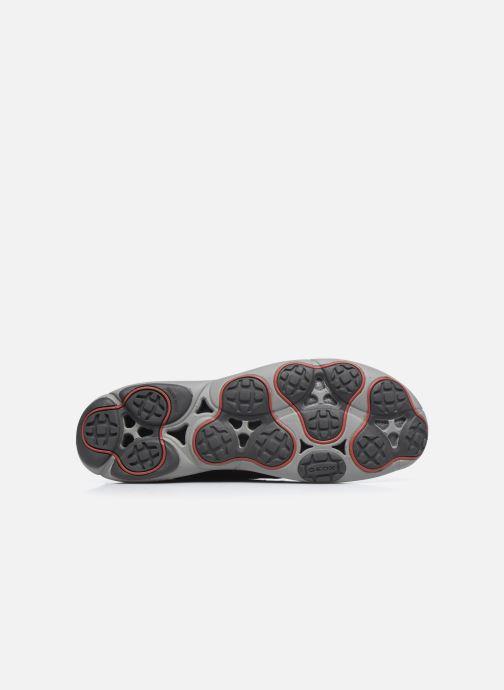 Geox U NEBULA F U62D7F (Grigio) Sneakers chez Sarenza (264416)