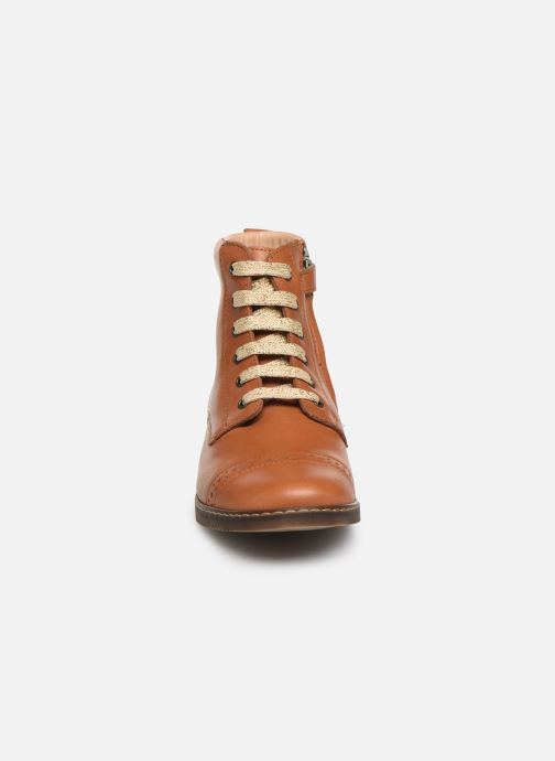 Botines  Pom d Api City Brogue Marrón vista del modelo