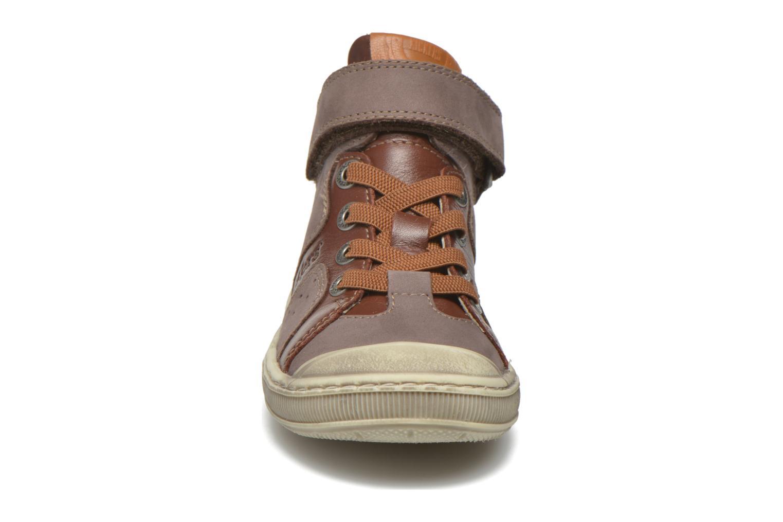 Baskets Kickers Iguane Marron vue portées chaussures