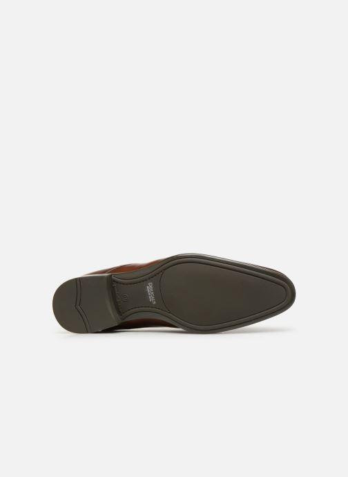 Chaussures à lacets Doucal's Omar Vichy Marron vue haut