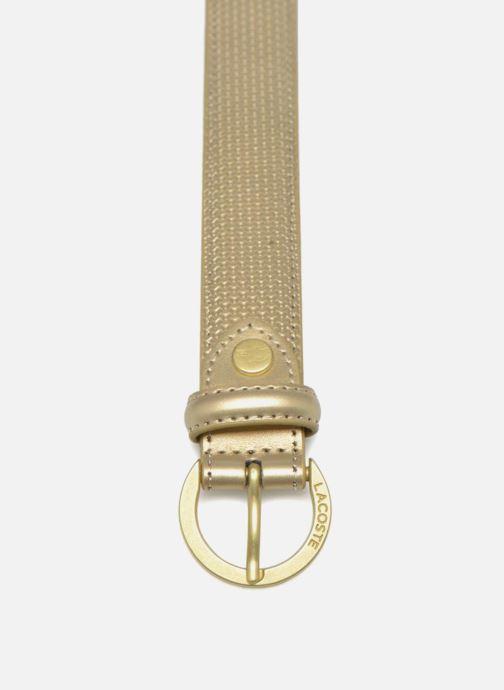 Cinturones Lacoste Leather belt N Oro y bronce vista del modelo