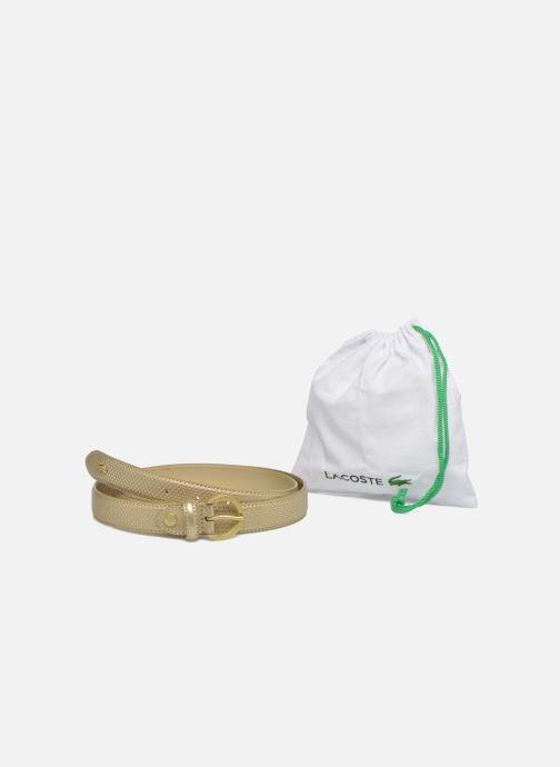 Cinturones Lacoste Leather belt N Oro y bronce vista de detalle / par
