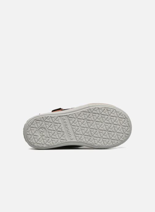 Sneakers PEPINO Kimo Nero immagine dall'alto