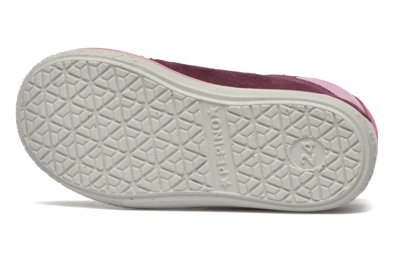 Trainers PEPINO Kimo Purple view from above