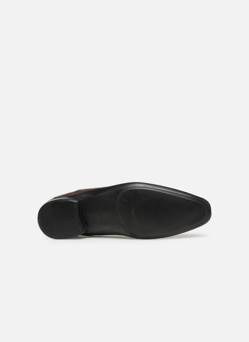 Zapatos con cordones Azzaro Outino Marrón vista de arriba