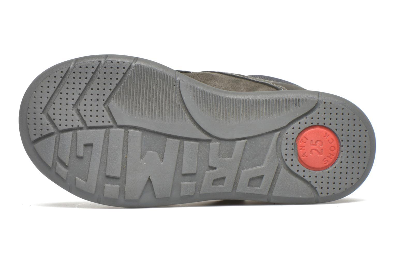 Chaussures à scratch Primigi Tristan Gris vue haut