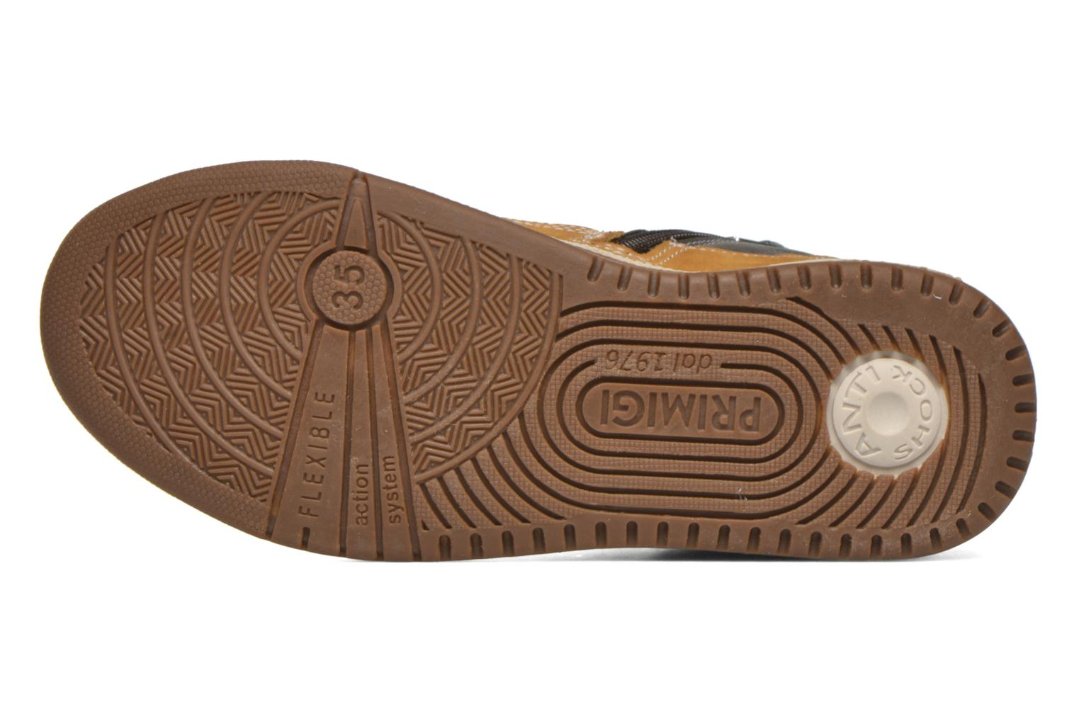 Trainers Primigi Neo B8 Beige view from above