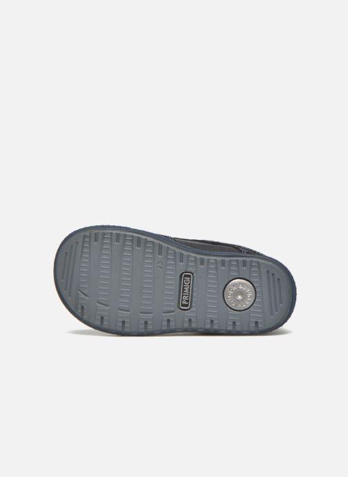 Sneaker Primigi Oran blau ansicht von oben