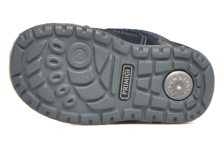 Stiefel Primigi Wick-E blau ansicht von oben