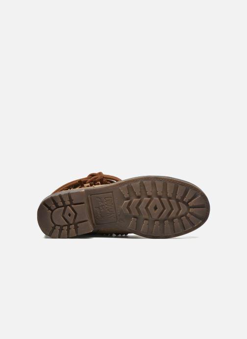 Bottines et boots Coolway Belia Marron vue haut
