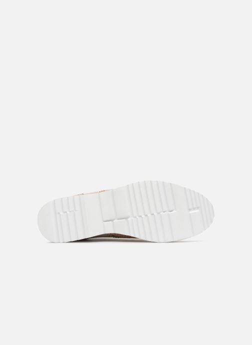 Zapatos con cordones Karston Olago Oro y bronce vista de arriba