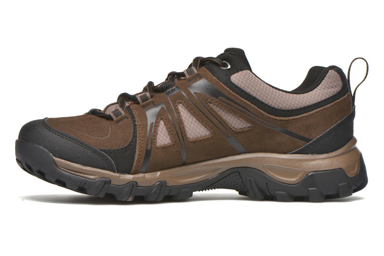 Chaussures de sport Salomon Evasion GTX Marron vue face