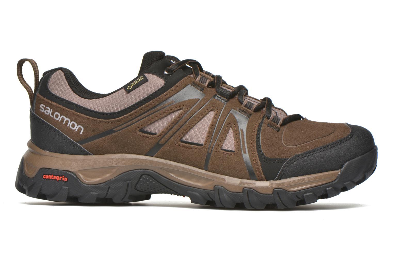 Chaussures de sport Salomon Evasion GTX Marron vue derrière