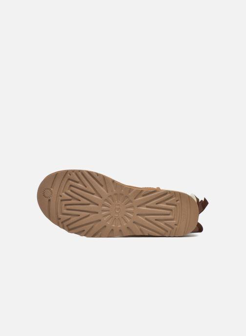 Stiefeletten & Boots UGG W Bailey Bow II braun ansicht von oben