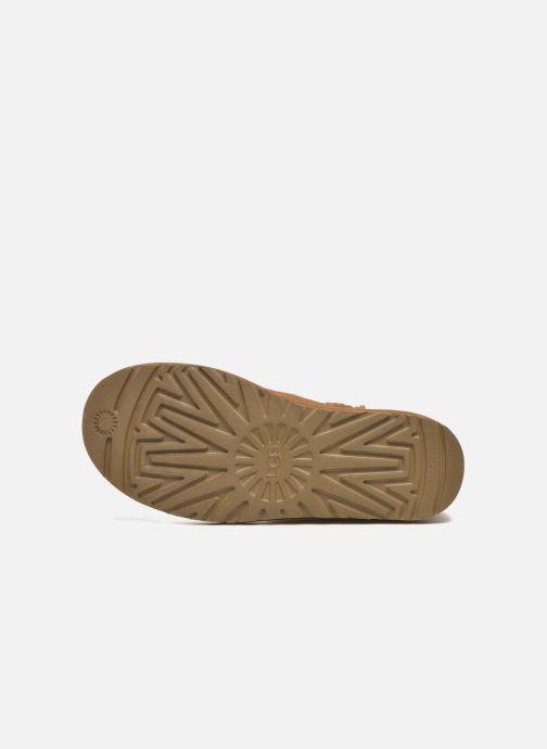 Stiefeletten & Boots UGG W Bailey Button II braun ansicht von oben