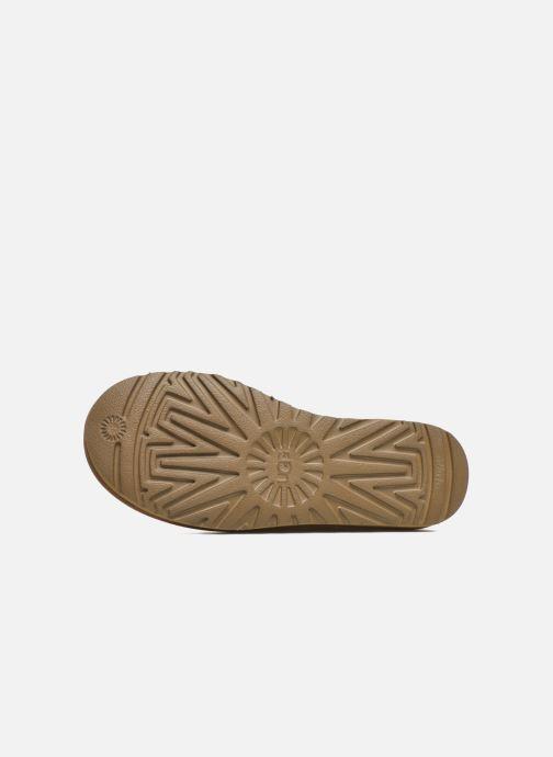 Stiefeletten & Boots UGG W Mini Bailey Button II braun ansicht von oben