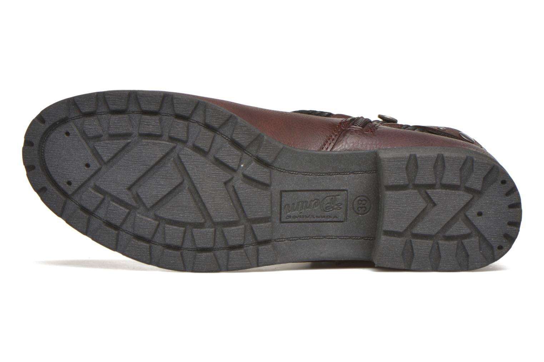 Stiefeletten & Boots Tom Tailor Pauline weinrot ansicht von oben