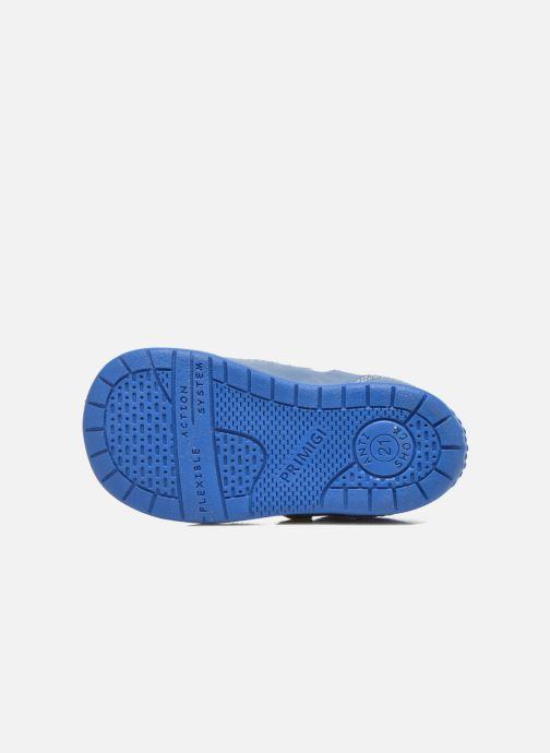 Scarpe con gli strappi Primigi Ray Azzurro immagine dall'alto