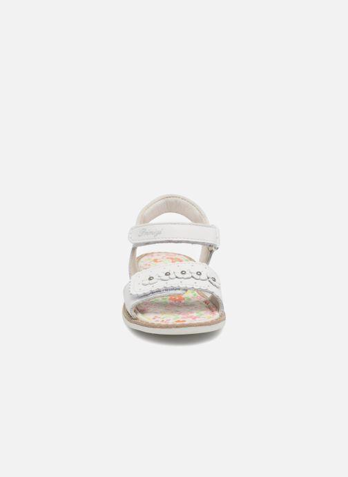 Sandales et nu-pieds Primigi Nora Blanc vue portées chaussures
