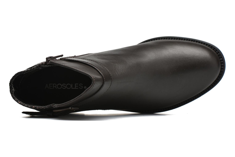 Stiefeletten & Boots Aerosoles Pushchairs braun ansicht von links