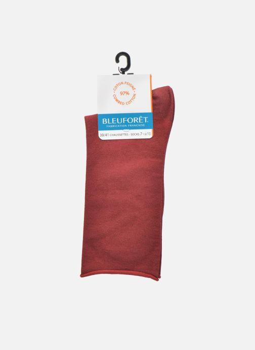 Chaussettes et collants BLEUFORÊT Chaussettes coton velouté Bordeaux vue derrière