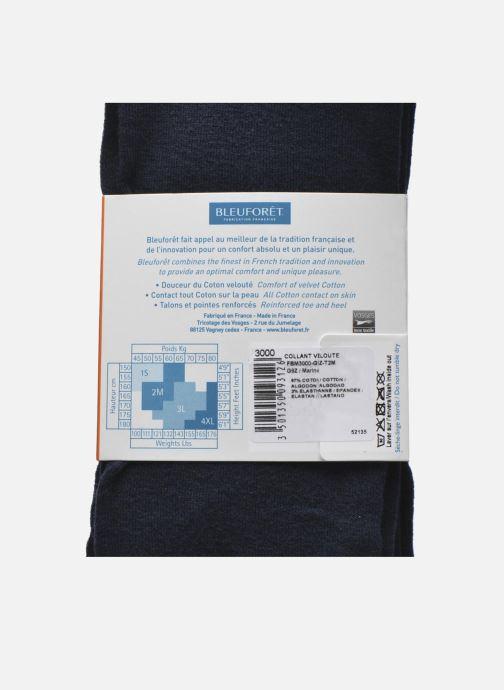 Chaussettes et collants BLEUFORÊT Collant coton velouté Bleu vue derrière
