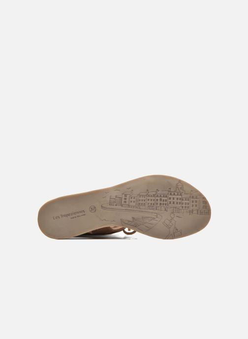 Sandali e scarpe aperte Les Tropéziennes par M Belarbi Baktal Marrone immagine dall'alto