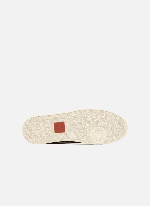Sneakers Redskins Ormil Brun se foroven