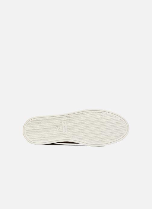 Sneakers Schmoove Spark Clay Marrone immagine dall'alto