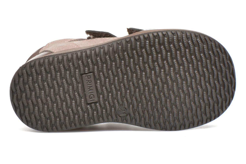Zapatos con velcro Primigi Ghigo 7 Marrón vista de arriba