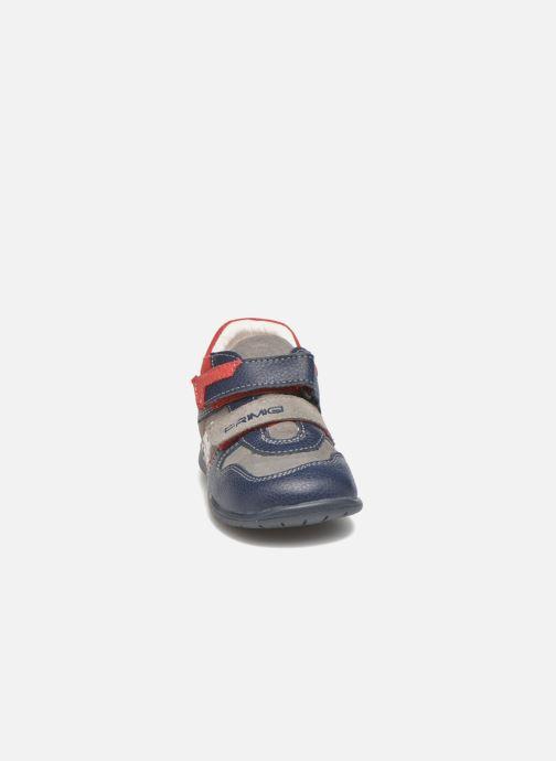 Zapatos con velcro Primigi Jesse Gris vista del modelo