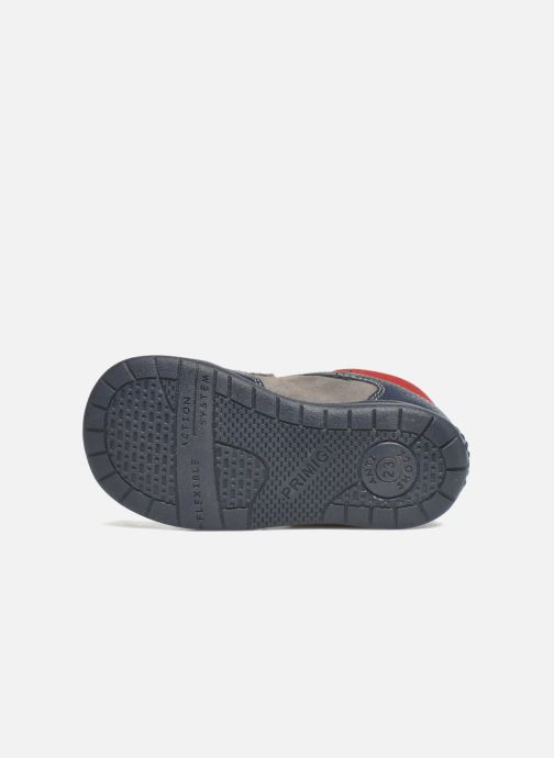 Chaussures à scratch Primigi Jesse Gris vue haut