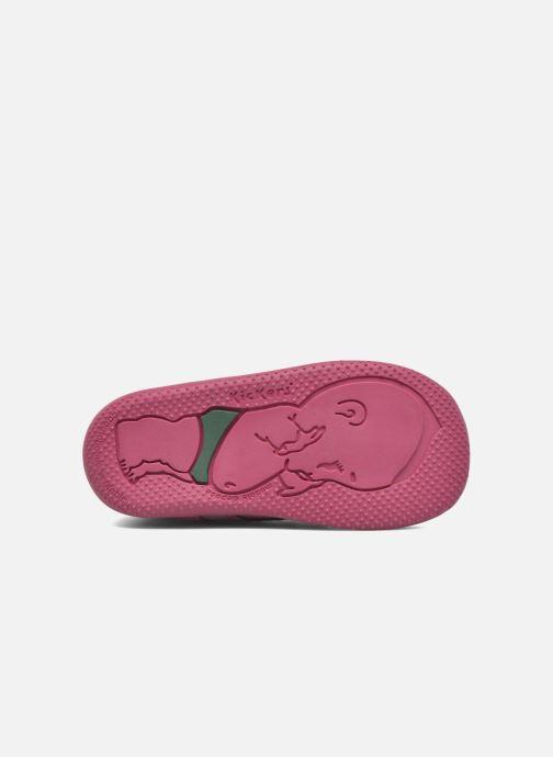 Stivaletti e tronchetti Kickers Bonbon II Rosa immagine dall'alto