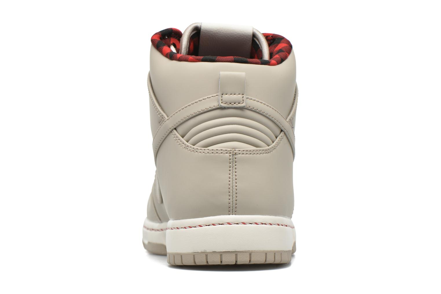 Trainers Nike Nike Dunk Ultra Grey view from the right