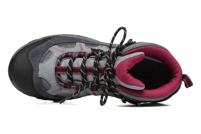 Scarpe sportive Salomon Authentic LTR GTX W Grigio immagine sinistra