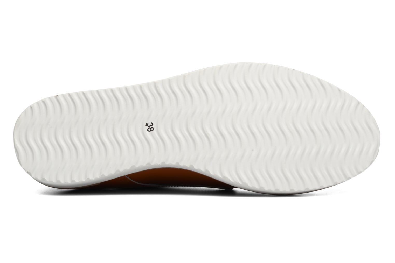 Chaussures à lacets Ippon Vintage James Colors Marron vue haut