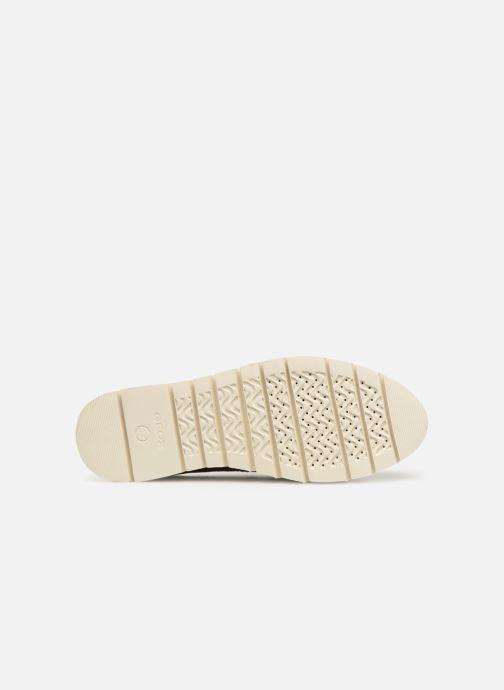 Zapatos con cordones Geox D BLENDA A D720BA Marrón vista de arriba