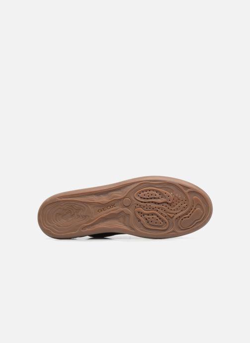 Sneaker Geox U NEW DO B U620QB braun ansicht von oben