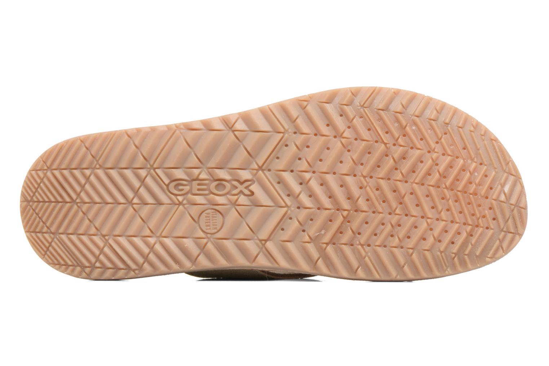 Sandales et nu-pieds Geox U ARTIE D U72V1D Beige vue haut