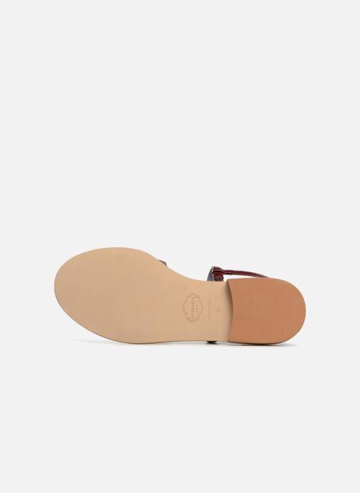 Sandales et nu-pieds Apologie Nemo Bordeaux vue haut