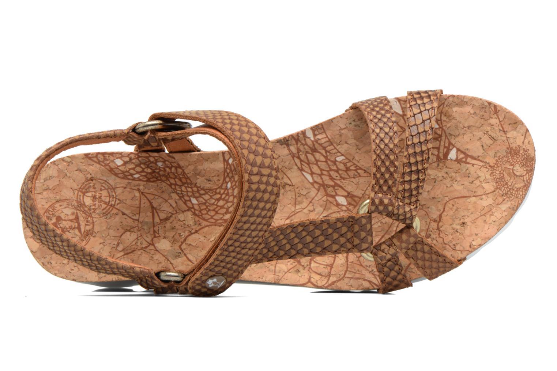 Sandalias Panama Jack Sally snake Marrón vista lateral izquierda