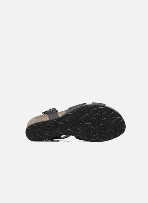 Sandales et nu-pieds Panama Jack Vika Noir vue haut